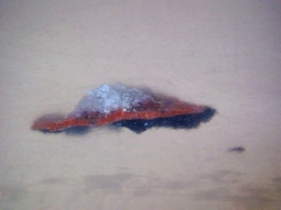 la stratigrafia mostra una sovrapposizione di uno strato successivo in blu di smalto ad una precedente stesura di incarnato. Indicazione di cambiamento della rappresentazione.