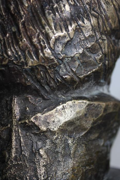 Particolare testa femminile bronzea